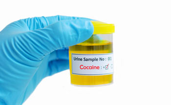 drug testing for cocaine